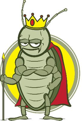 Kingbugsonly